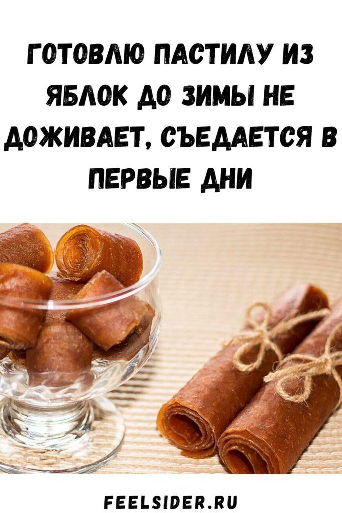 Готовлю пастилу из яблок до зимы не доживает, съедается в первые дни