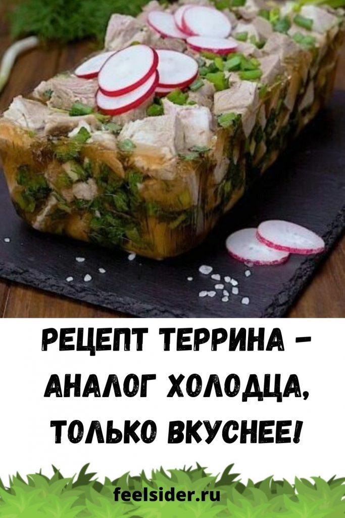 Рецепт террина - аналог холодца, только вкуснее!