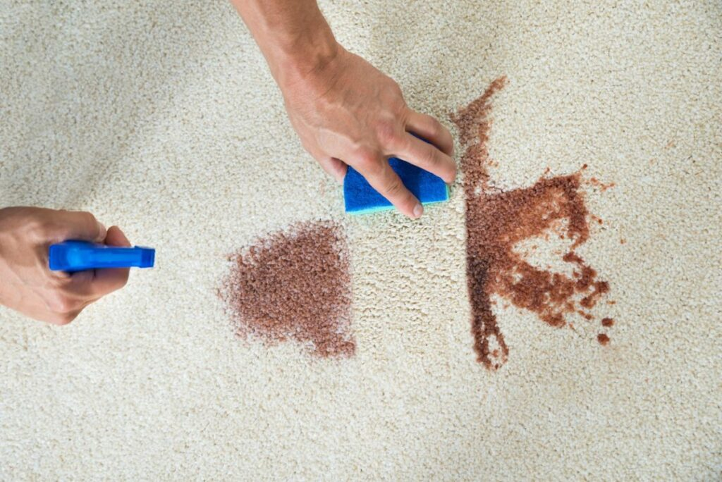 Как почистить ковер в домашних условиях легко и эффективно!