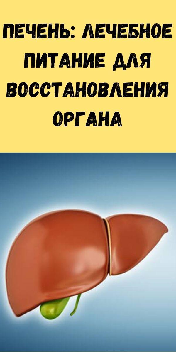 ПЕЧЕНЬ: лечебное питание для восстановления органа