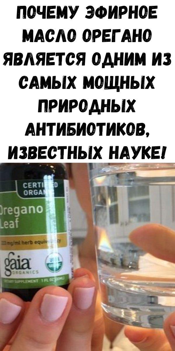 Почему эфирное масло орегано является одним из самых мощных природных антибиотиков, известных науке!