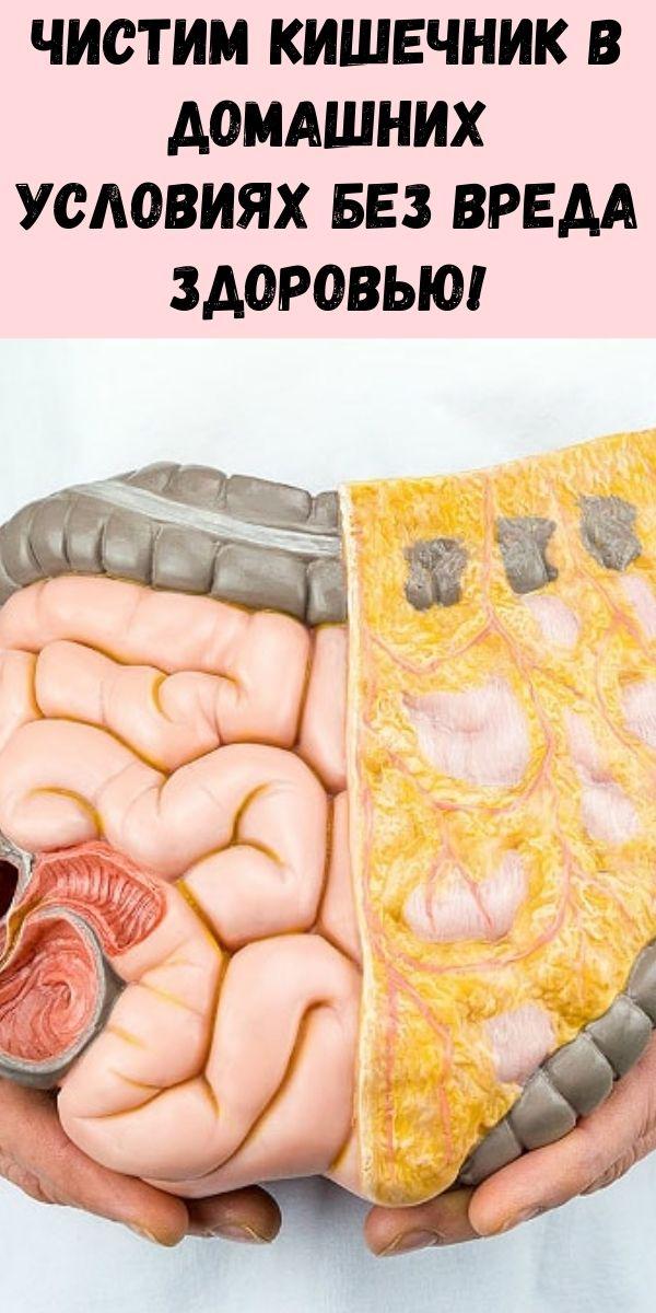 Чистим кишечник в домашних условиях без вреда здоровью!