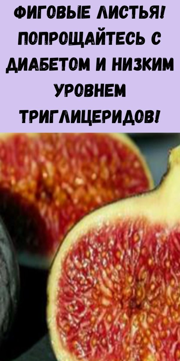 Фиговые листья! Попрощайтесь с диабетом и низким уровнем триглицеридов!
