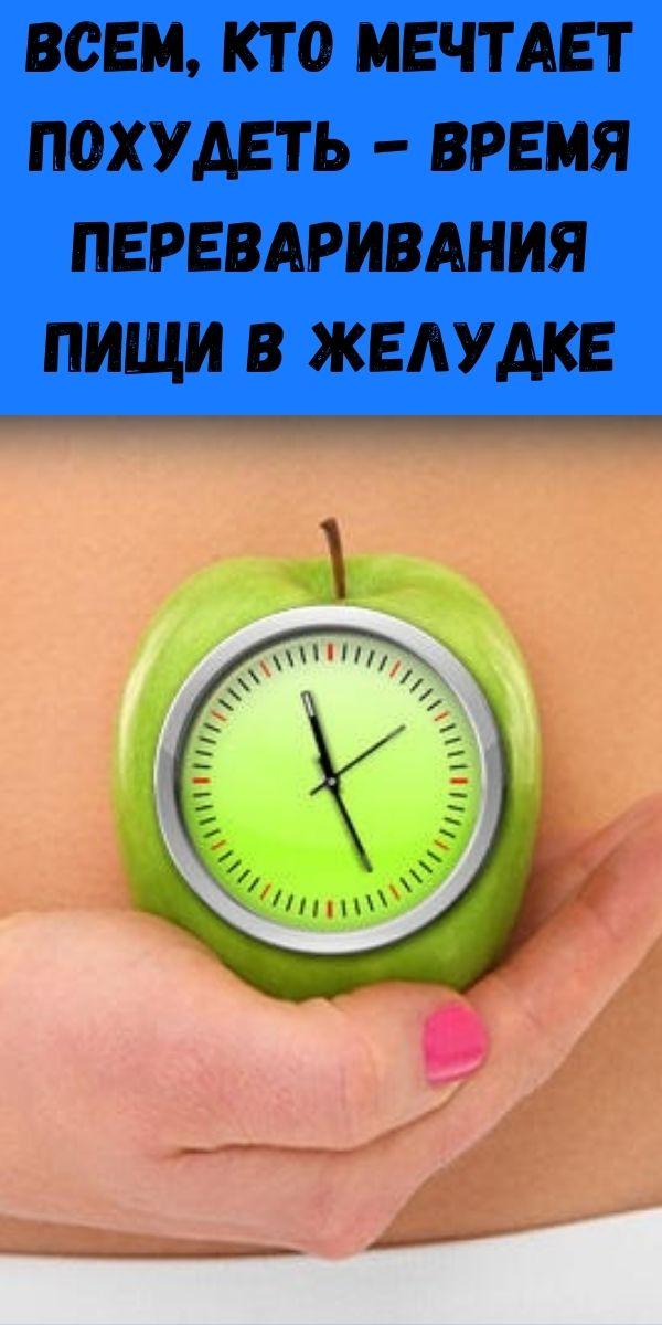 Всем, кто мечтает похудеть - Время переваривания пищи в желудке