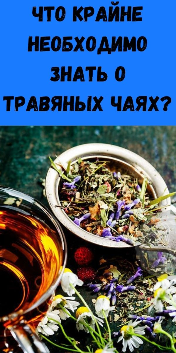 Что крайне необходимо знать о травяных чаях?