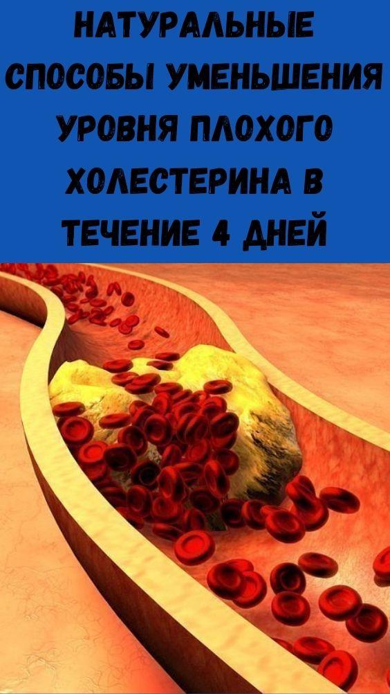 Натуральные способы уменьшения уровня плохого холестерина в течение 4 дней
