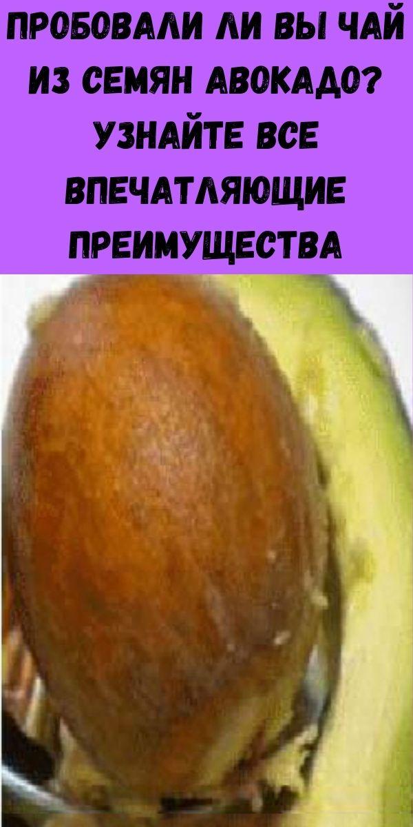 Пробовали ли вы чай из семян авокадо? Узнайте все впечатляющие преимущества