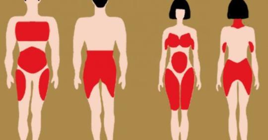 Почему наши тела перераспределяют жир по мере того как мы стареем, и как предотвратить это