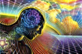 Как ум создает нашу жизнь