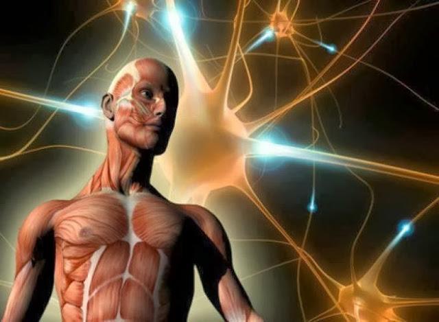 Все, что Вы держите в уме, отразится в Вашем теле